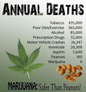 Statistics supporting the legalization of marijuana.